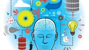 Capacités cognitives et psychomotrices
