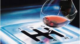 L'alcool au volant et ses dangers baisse des capacités cognitives