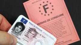 Nouveau permis de conduire transitoire aux normes européennes
