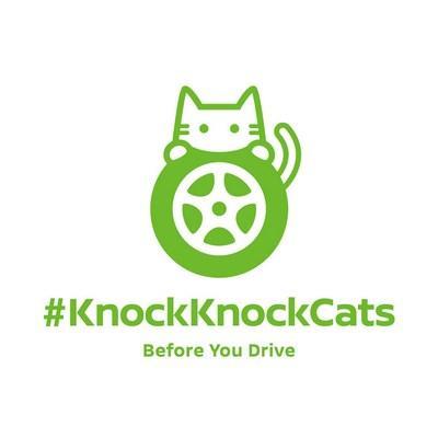 KnockKnockCats campagne Nissan pour la défense des chats